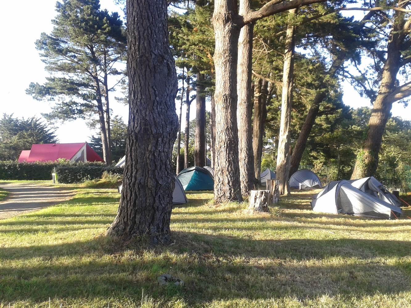 Emplacements camping bien ombragés ©