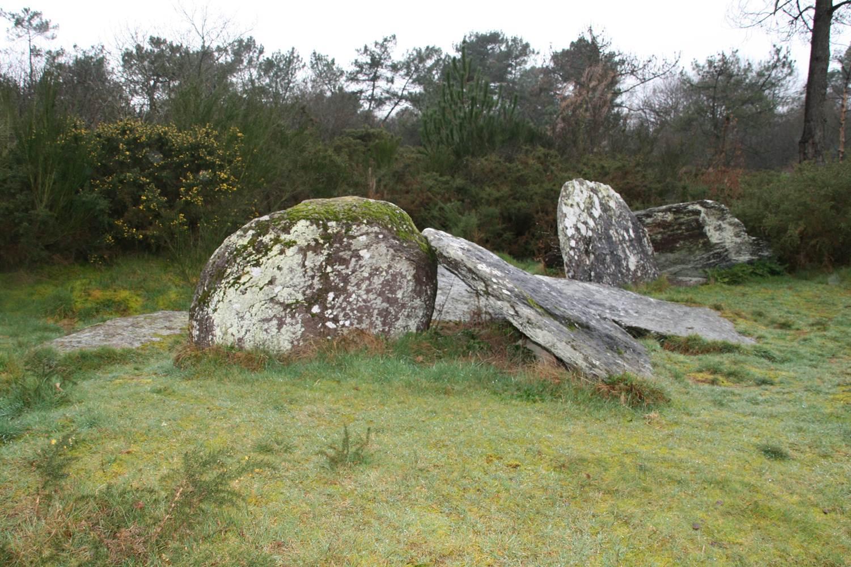 Le Clos Bocher - Monteneuf - Morbihan Bretagne sud © CDT56 - P GOUEZIN