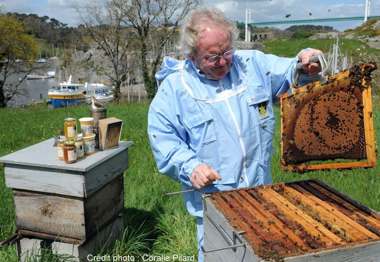 Remy Lucas-Maison de l'abeille-La Roche-Bernard © Coralie PILARD
