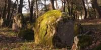 Dolmen du Luffang