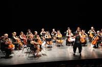 Rencontres de Violoncelles en Morbihan