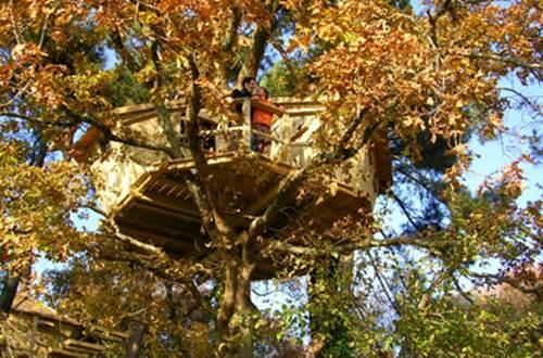 Nuit d'exception en cabanes perchées dans les arbres