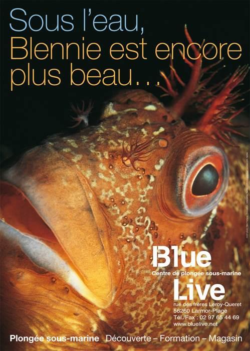 Blue Live - Plong�e