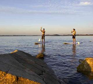 Balade nature dans le golfe du Morbihan en Stand Up Paddle