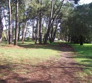 Site mégalithique de Kernours