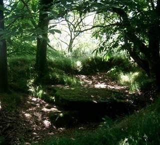 Dolmen de Kergonfalz