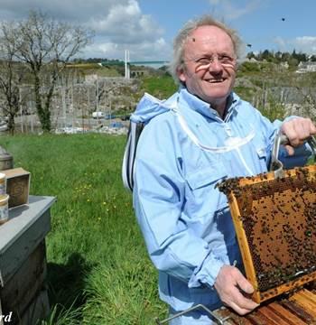 Remy Lucas-Maison de l'abeille-La Roche-Bernard
