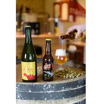 Brasserie-de-Rhuys-Surzur-Golfe-du-Morbihan-Bretagne sud