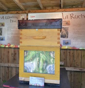 La-Maison-du-Cidre-Le-Hezo-Morbihan-Bretagne-Sud-HD56-4