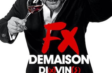 DI(x)VIN(s) - François-Xavier Demaison