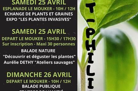 Chic c'est le printemps : la commune se met au vert (SAINT-PHILIBERT)
